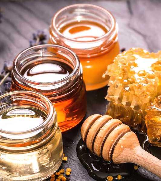 Miele della Sardegna